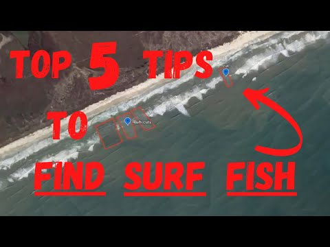 Tips On How To Catch Trout And Redfish 3 - Surf Fishing