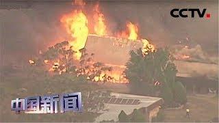 [中国新闻] 澳大利亚东部森林大火肆虐 2人死亡7人失踪 | CCTV中文国际