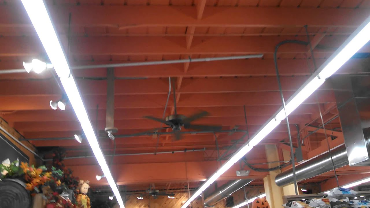Casablanca Delta II and Panama Ceiling Fans in a grocery store