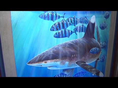Dr. Guy Harvey at his Grand Cayman Art Gallery