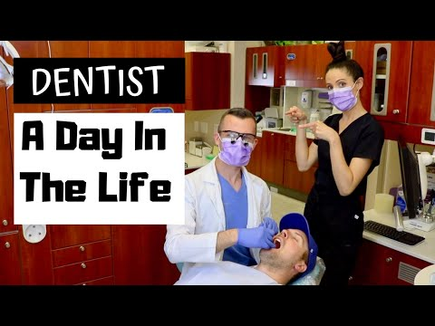 A Day In The Life Of A Dentist