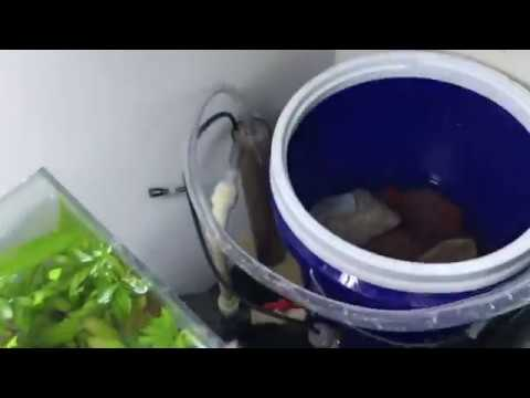 Modification and Media in the DIY Bucket Filter