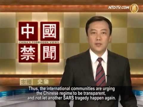 Is the H7N9 Bird Flu Virus More Dangerous Than What the Media is Reporting?