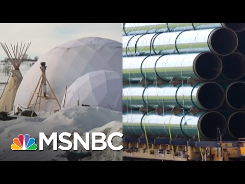 DAPL Greenlit Without Input From Standing Rock Sioux | AM Joy | MSNBC