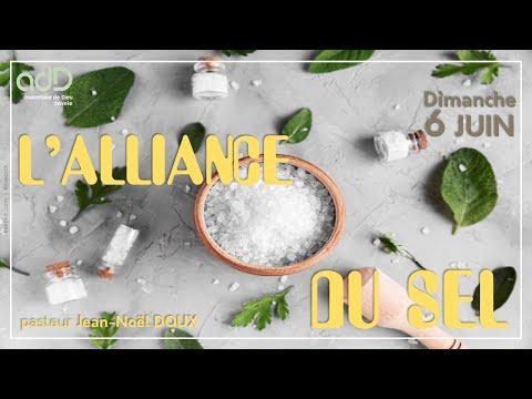 L'alliance du sel | JN Doux