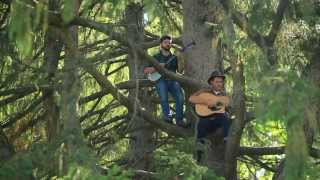 Evergreen - The Okee Dokee Brothers