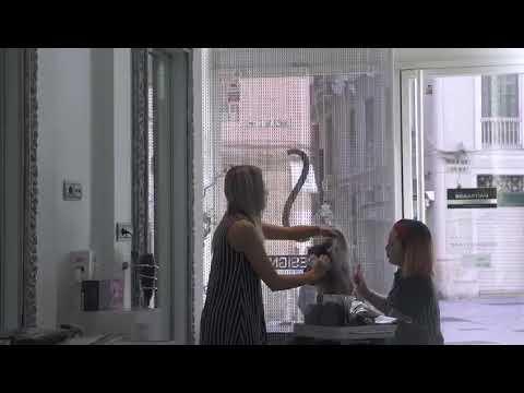 Is hairdesign
