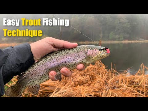 Never Fished Here Before | Trout Fishing (EPIC)