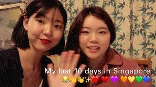 Vlog | my last 10 days in Singapore
