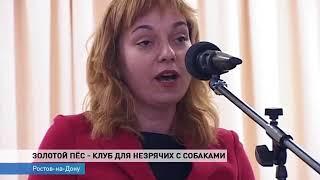 В Ростове открылся клуб владельцев собак-проводников