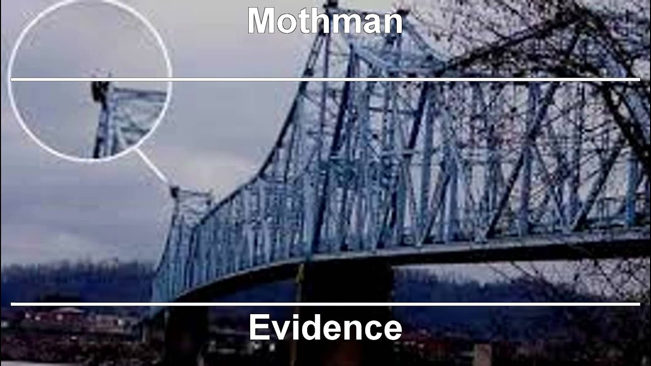 is the mothman real or fake
