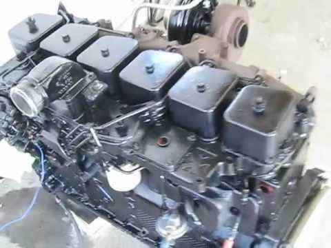 5.9 cummins Turbo Diesel VE pump intercooled!! startup