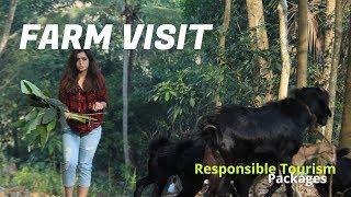 Bustling Livestock of Kerala
