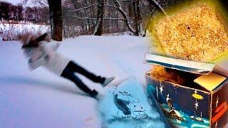 Снег || Сажаем траву || Смываем искусственный снег || Разбираем ёлку(Можно отдельно купить овёс и пшеницу или только овёс и не выбирать из корма :) -----------------------------------------------------..., 2016-01-21T19:48:49.000Z)
