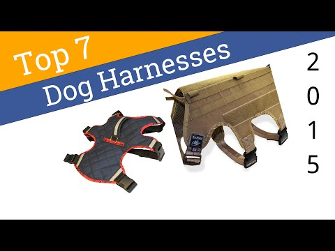 7 Best Dog Harnesses 2015