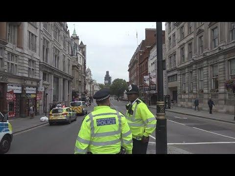 Αυτοκίνητο έπεσε στα οδοφράγματα, στο κοινοβούλιο του Λονδίνου