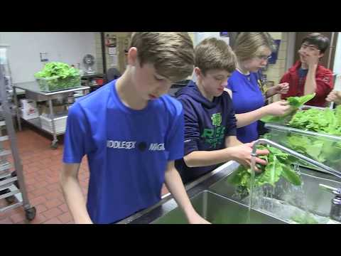 Wellesley Middle School Students Growing Own Food Hydroponically