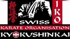 Swiss Summer Camp Karate IKO  Kyokushin à Lausanne