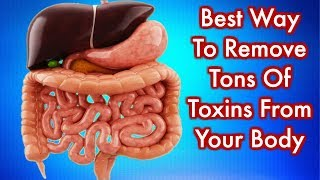 Home Remedies that clean your colon of toxic waste overnight