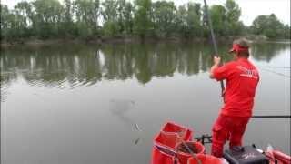 Italian Fishing TV - Milo  Red Tetragon Parte 1