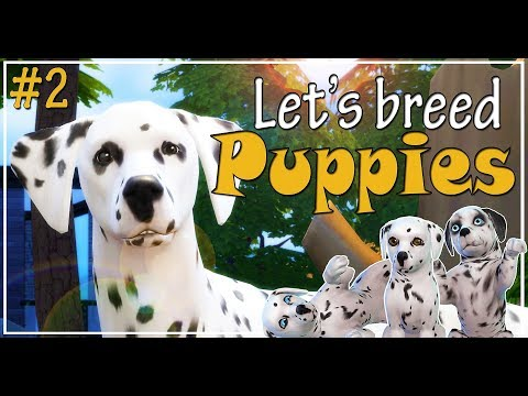 🐶-the-sims-4-cats-and-dogs-|-let's-play-and-breed-dalmatian-puppies-|-we-have-puppies!-|-ep.-2