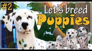 The Sims 4 Cats and Dogs - Let's play and breed Dalmatian puppies - Ep. 2 - We have puppies!