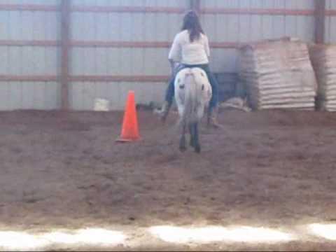 Pony Riding!