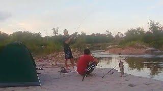 Disini cuma ada ikan baung [] mancing sambil camping ditepi sungai