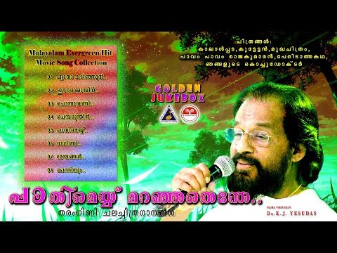പാതിമെയ്യ്  മറഞ്ഞതെന്തേ|Malayalam Movie Song Collections|തിരഞ്ഞെടുത്ത മലയാളസിനിമാ ഗാനങ്ങൾ