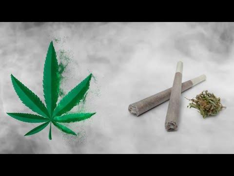 Marijuana- Legal in India?