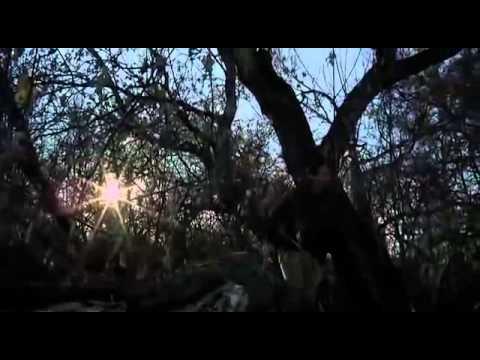 ЖУТКИЕ 13    США Канада Ужасы Фантастика  ФИЛЬМЫ 2014     YouTube 360p - Ruslar.Biz