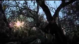 ЖУТКИЕ 13    США Канада Ужасы Фантастика  ФИЛЬМЫ 2014     YouTube 360p