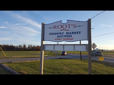 Welcome to Roots in Amish Country, Lancaster County