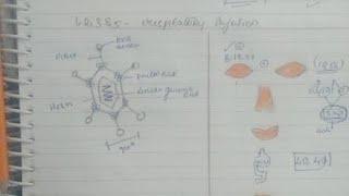 Adenovirus..