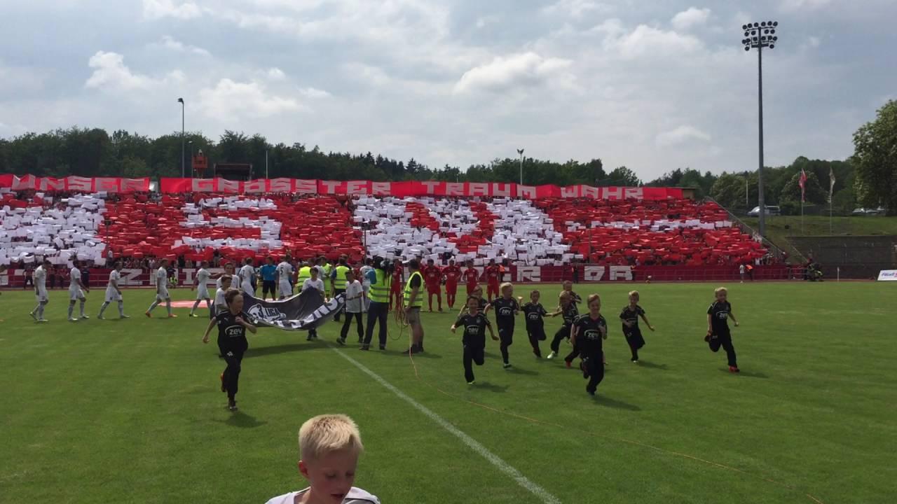 fsv zwickau relegation