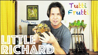 Guitar Lesson: How To Play Tutti Frutti by Little Richard
