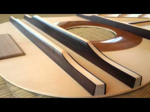 Victor Diaz - New harmonic system for flamenco guitar