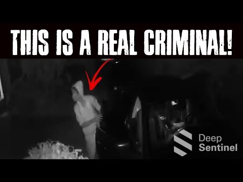 Real Criminal Stopped By Artificial Intellegence.  Deep Sentinel Home Security.
