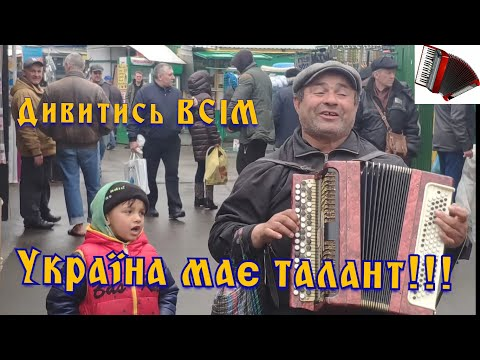 Цыган играет на