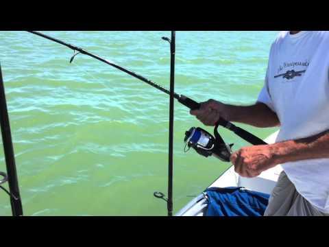 Fishing Goodland, FL 10,000 Islands.