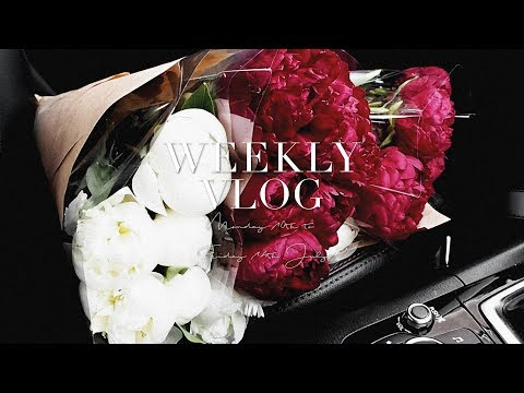 EVERYDAY MAKEUP ROUTINE / FASHION & BEAUTY HAUL / BUYING REALLY EXPENSIVE FLOWERS!   TWICE BLESSED