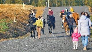 Уроки верховой езды от Hello Horse для маленьких жителей КП Александрийский Парк, Осень 2018.