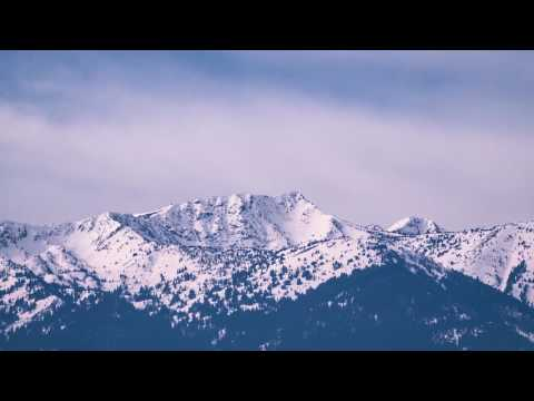 Voices of the Forest — Tribute to the Blue Mountains