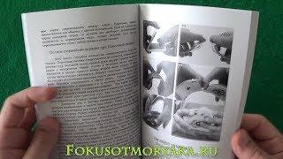 Обзор ШУЛЕРСКОЙ Книги Д. Мэдисона