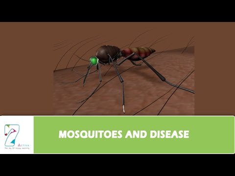 MOSQUITOES AND DISEASE