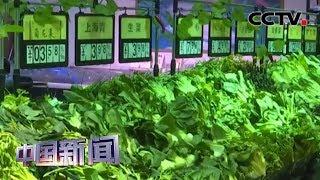 """[中国新闻] 农业农村部:今年""""菜篮子""""供应将总体向好   CCTV中文国际"""