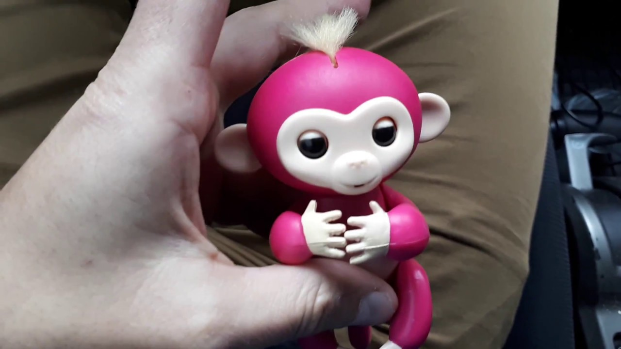Видео обзор обезьянка Fingerlings,купить,цена - интерактивная .