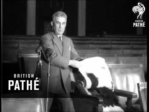 Five Shot In U.S. Congress (1954)