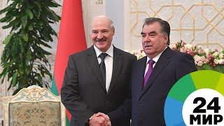 Беларусь и Таджикистан подпишут на бизнес-форуме взаимовыгодные контракты - МИР 24