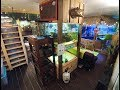 Complete Tour of the New Reptile Room